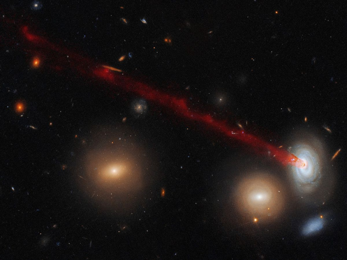 Tail emerging from a spiral galaxy nicknamed D100