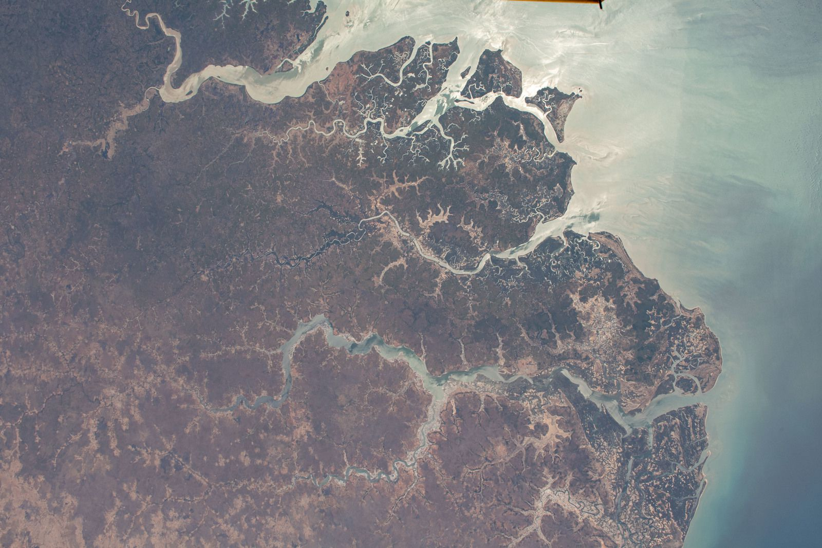 Rio Geba in Guinea-Bissau ( pictured from the International Space Station)
