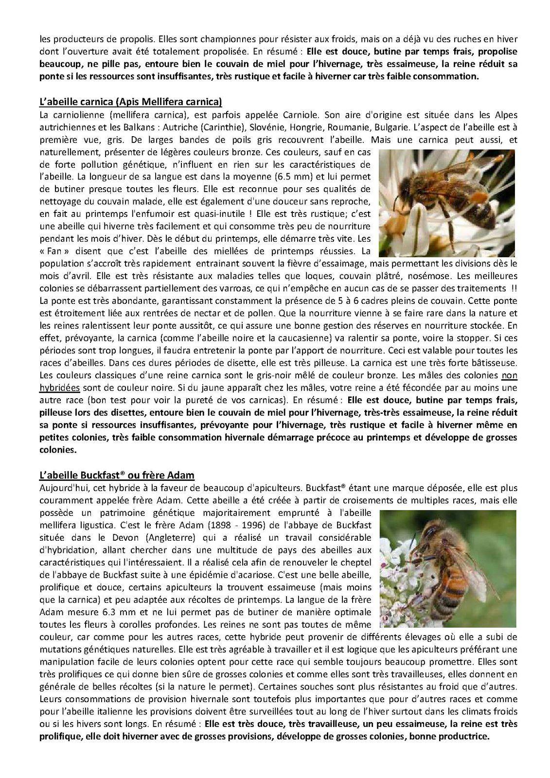 Choisir ses abeilles présenté par l'adsa33