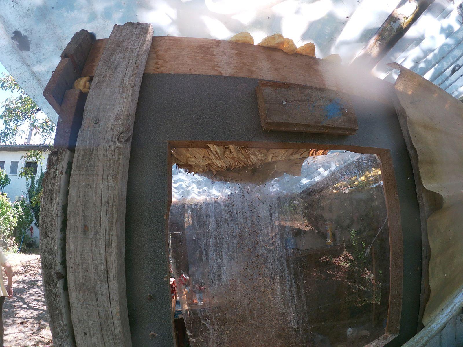 Pessac destruction rapide de vos nids de frelons contact 06 78 18 32 34   ADSA33