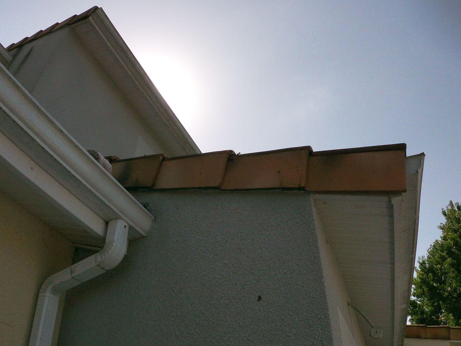Tabanac destruction et traitement rapide de vos nids de frelons contact 06 78 18 32 34