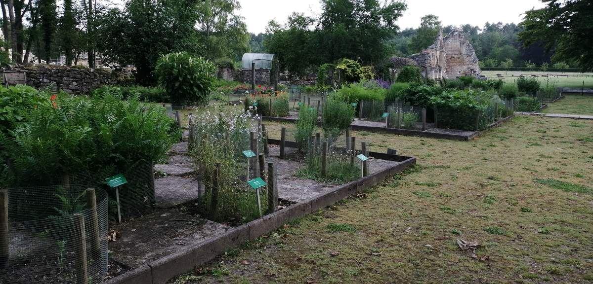 Jardin des plantes médicinales, juste derrière les ruines de l'Abbaye de Vauclair