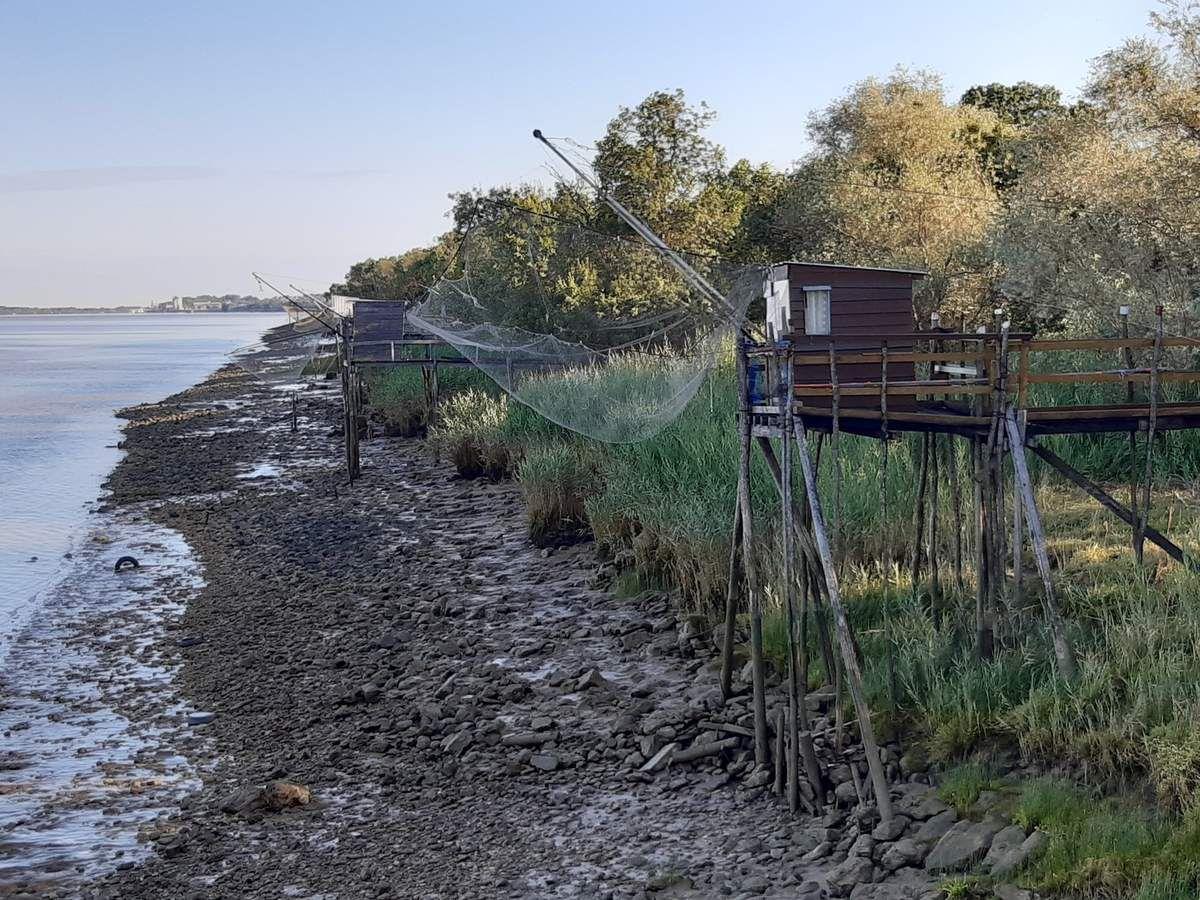 Sur le chemin ,l'estuaire,maisons troglodytes et rencontres