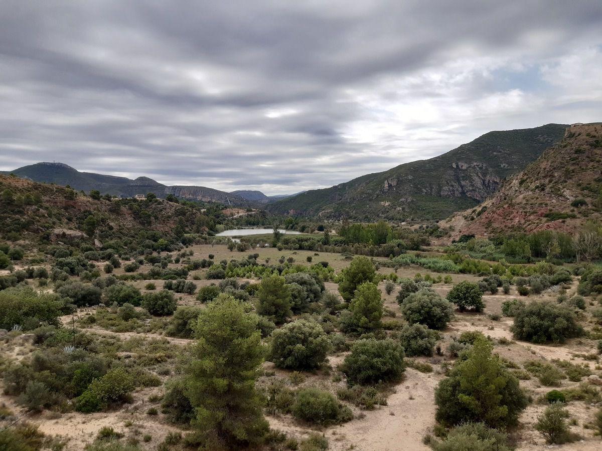 Photos du jours,champs d'oliviers et d'amandiers