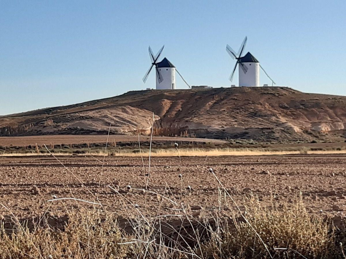 Des moulins ,le chemin ce n'est pas le Lavente ,ni le Suresne c'est Don Quichotte