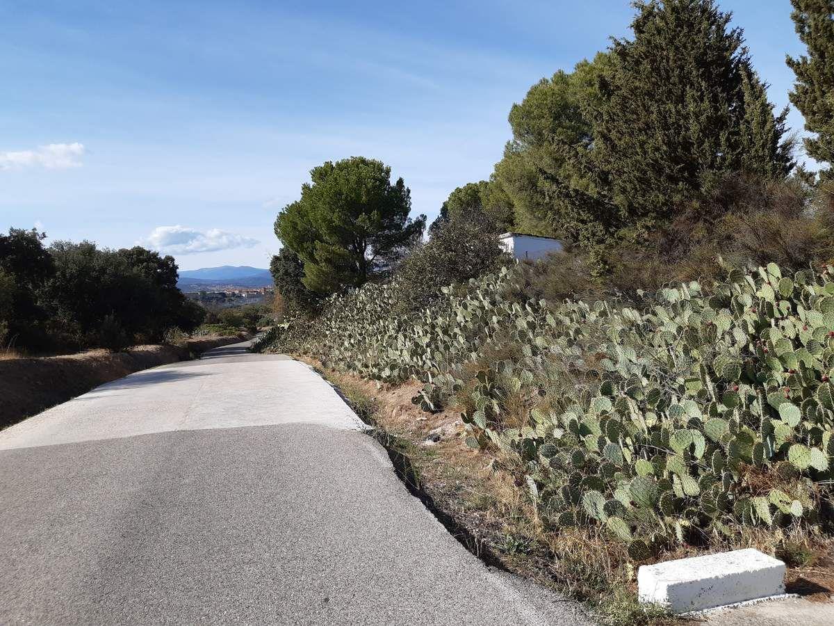 L'entrée  et le village d'Escalona