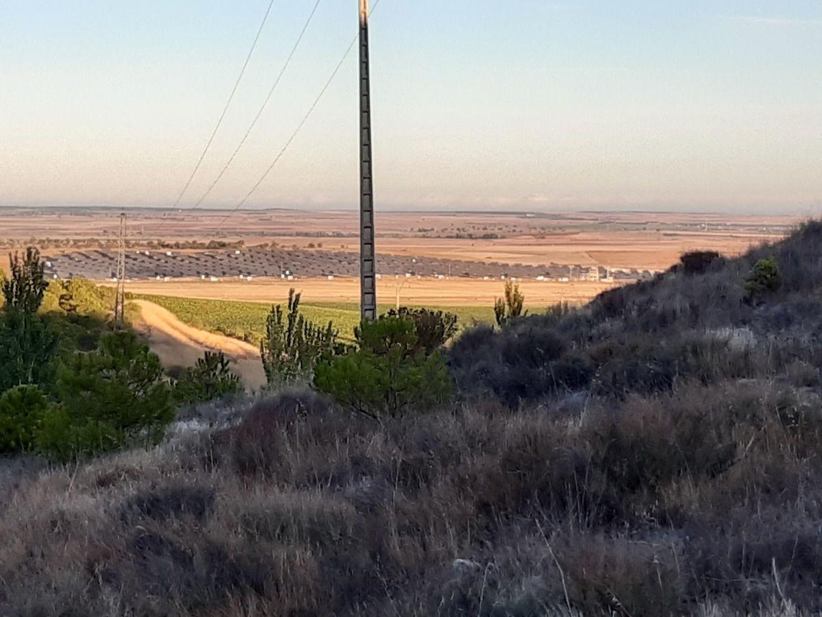 Le chemin 1 et partie et ruine d'un Castillo et un champs  de betteraves sucrières  ( à la louche le champs doit faire une centaine hectare )