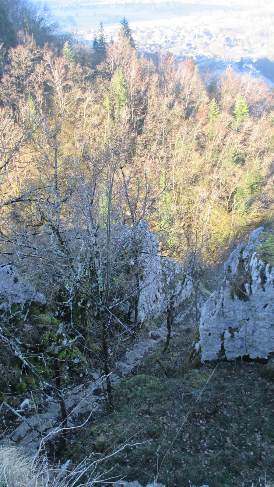 GR 9 direction Corbel . Point de vue sur St Christophe sur Guiers et les Echelles plus loin