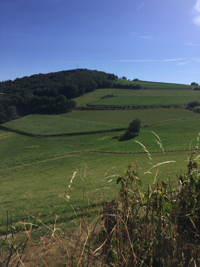 On peut ne pas être d'accord avec les modes d'agriculture, mais il faut avouer que ces champs bien rangés, c'est beau!
