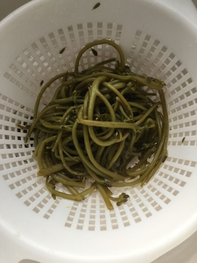 Les tiges les plus grosses, cuites à la vapeur seront consommées comme des asperges.
