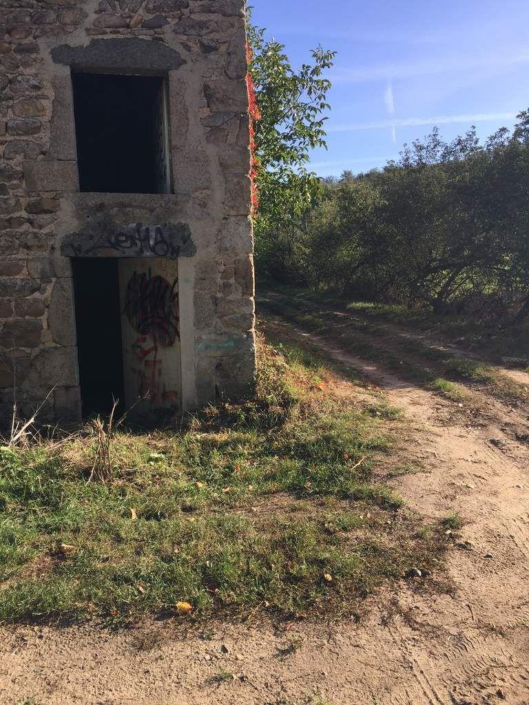 Quand à moi, j'ai fait le choix du chemin Borgne, mon objectif étant de continuer sur l'autre versant, côté Rhône. C'était vraiment une bonne idée car j'ai fait une belle rencontre de ce côté-ci. Synchronicité?