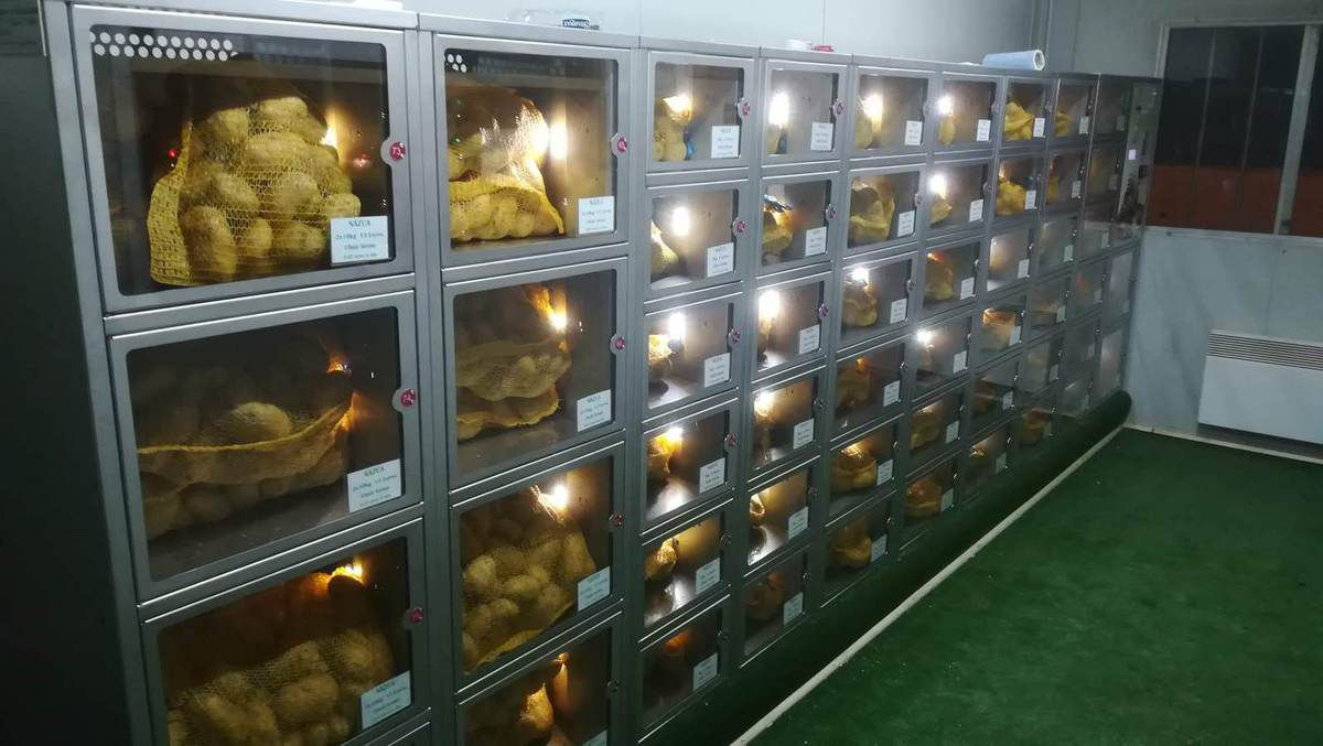 Distributeur à casiers automatisés