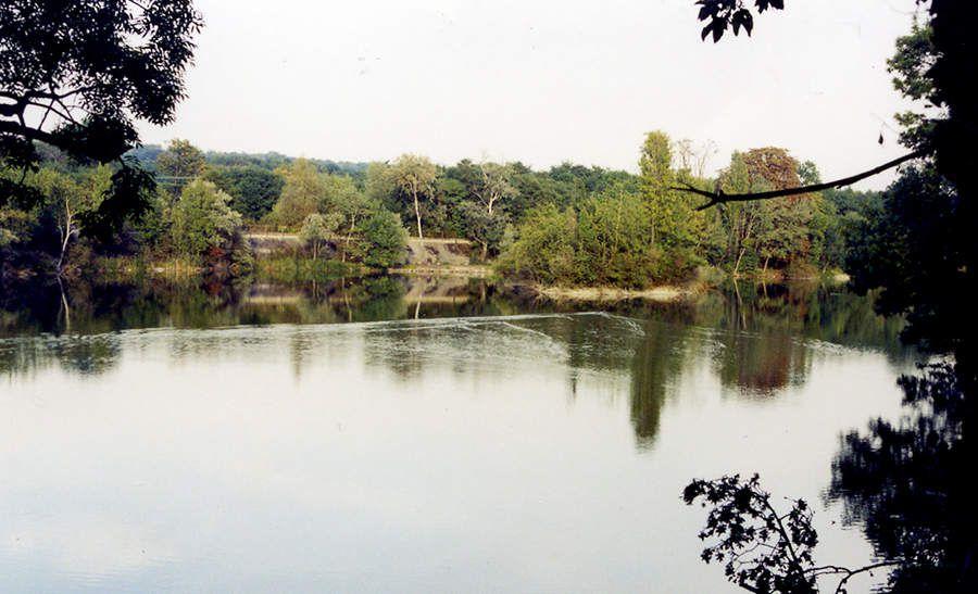 L'étang artificiel des Docks des Alcools avant son réaménagement