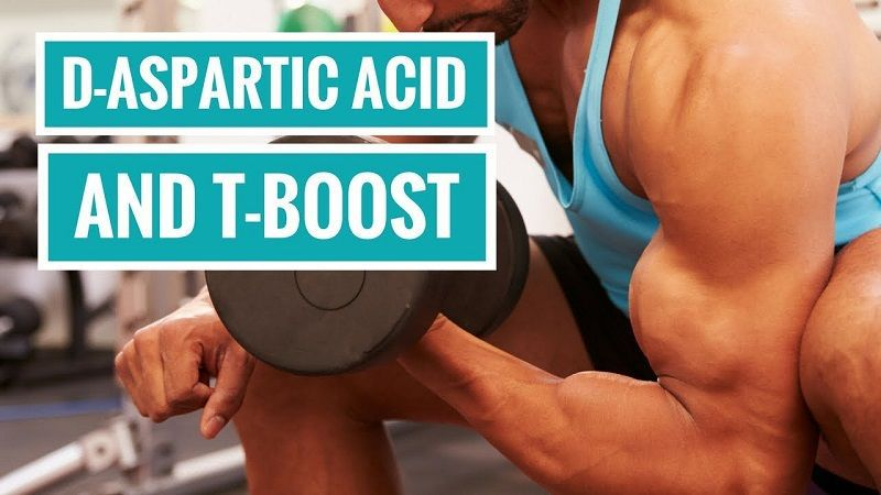 Does D Aspartic Acid Increase Testosterone