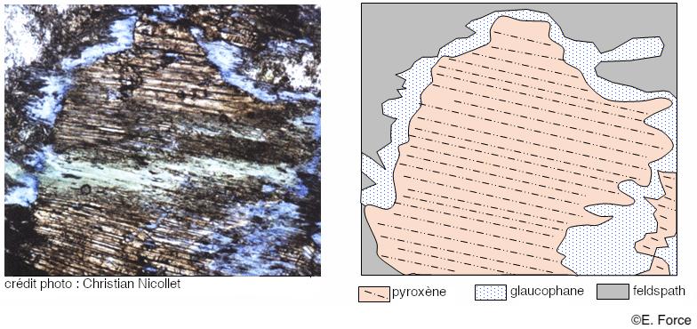 Figure 3. Observation microscopique d'un métagabbro du Queyras et schéma interprétatif (illustration : E. Force, tirée de la banque de schémas de SVT de l'académie de Dijon).