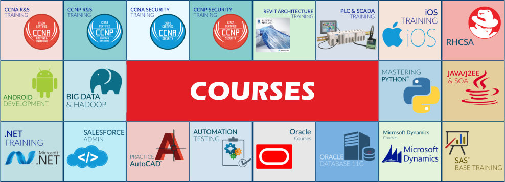 Scope Of Web Designing In India Best Institute For It Software Courses In Noida