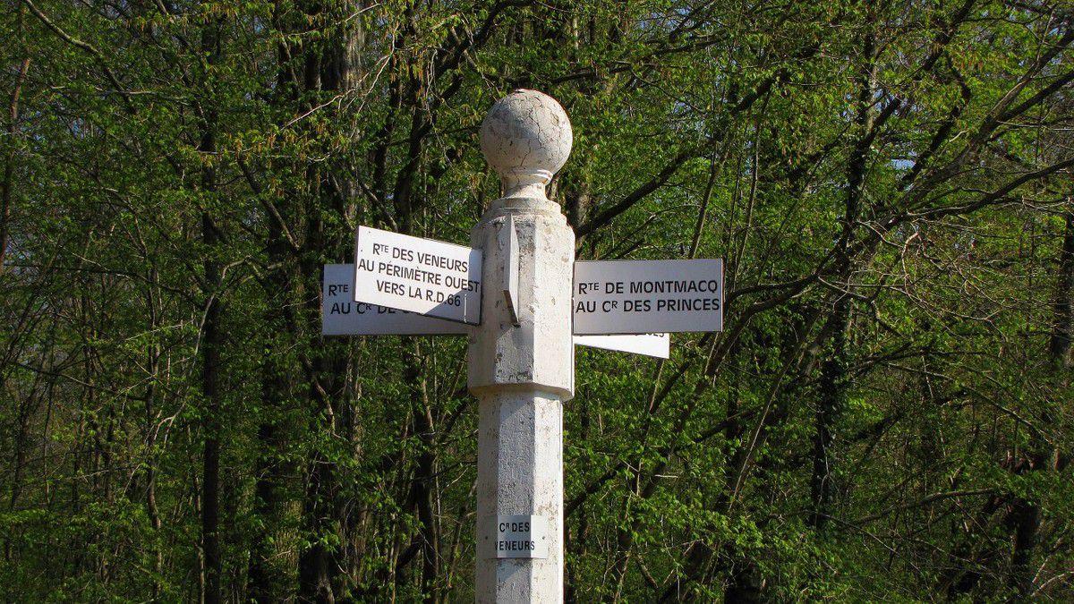 les carrefours nommés de la forêt de Laigue
