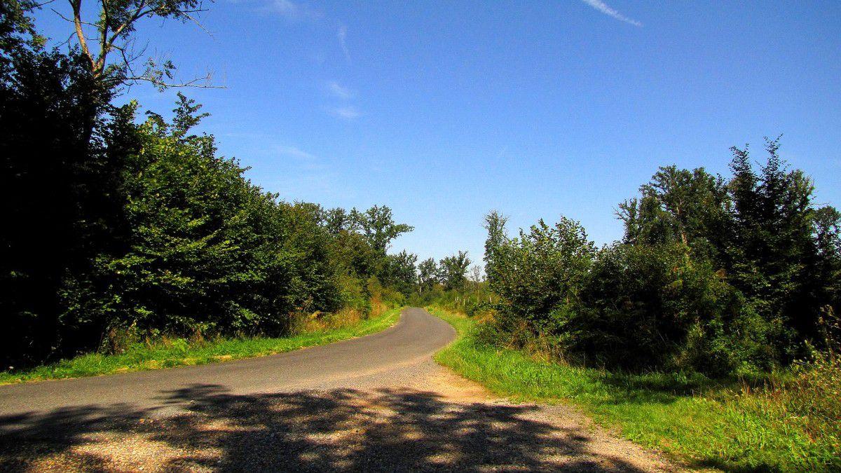 carrefour_Route de la Belle Assise_Chemin de Rethondes à St-Crépin-aux-Bois