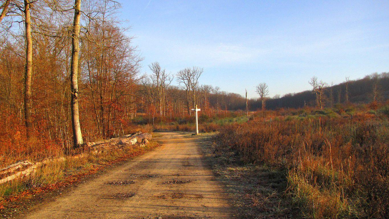 Helico_Route Forestière des Princesses_Route et Chemin de Briançon