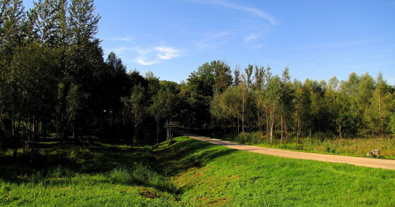 les étangs d'Offémont