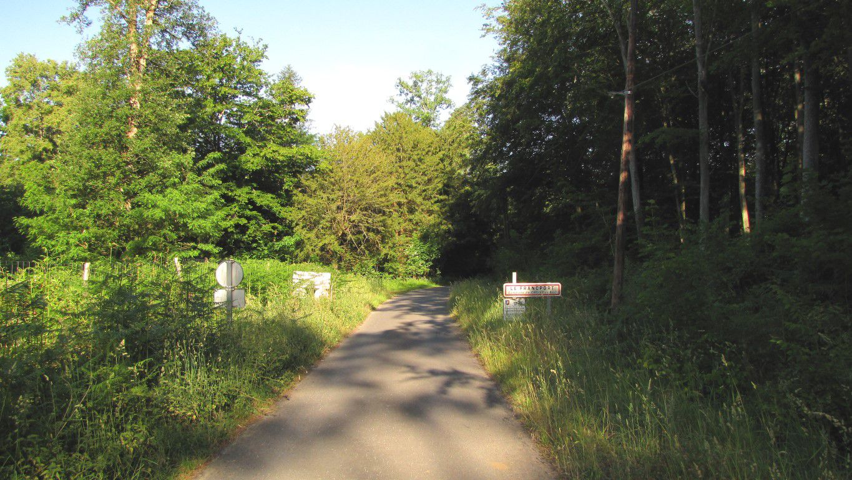 Randonnée en forêt de Laigue_sur les Routes de la Fontaine à Baril_Belle Assise_Plessis-Brion_Chemin de Voie d'eau