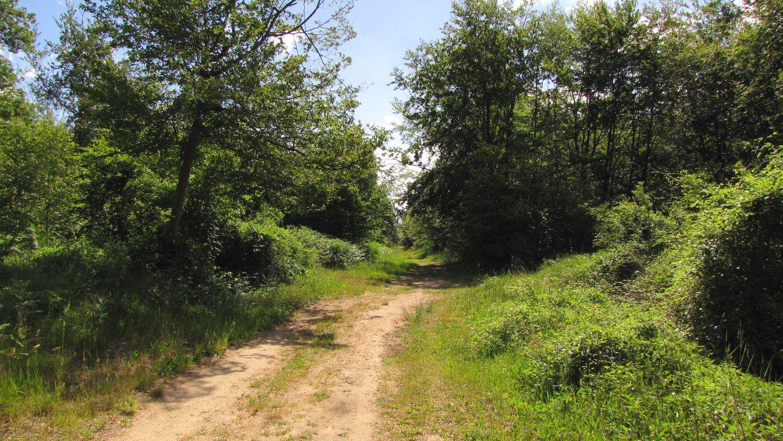 carrefour_Route du Goulvent_Route de Forestière de Sainte-Croix