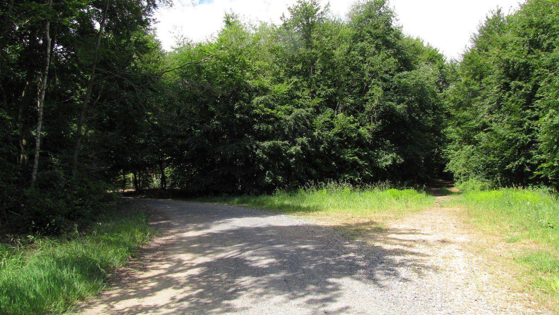 carrefour_Route du Goulvent_Route d'Offémont