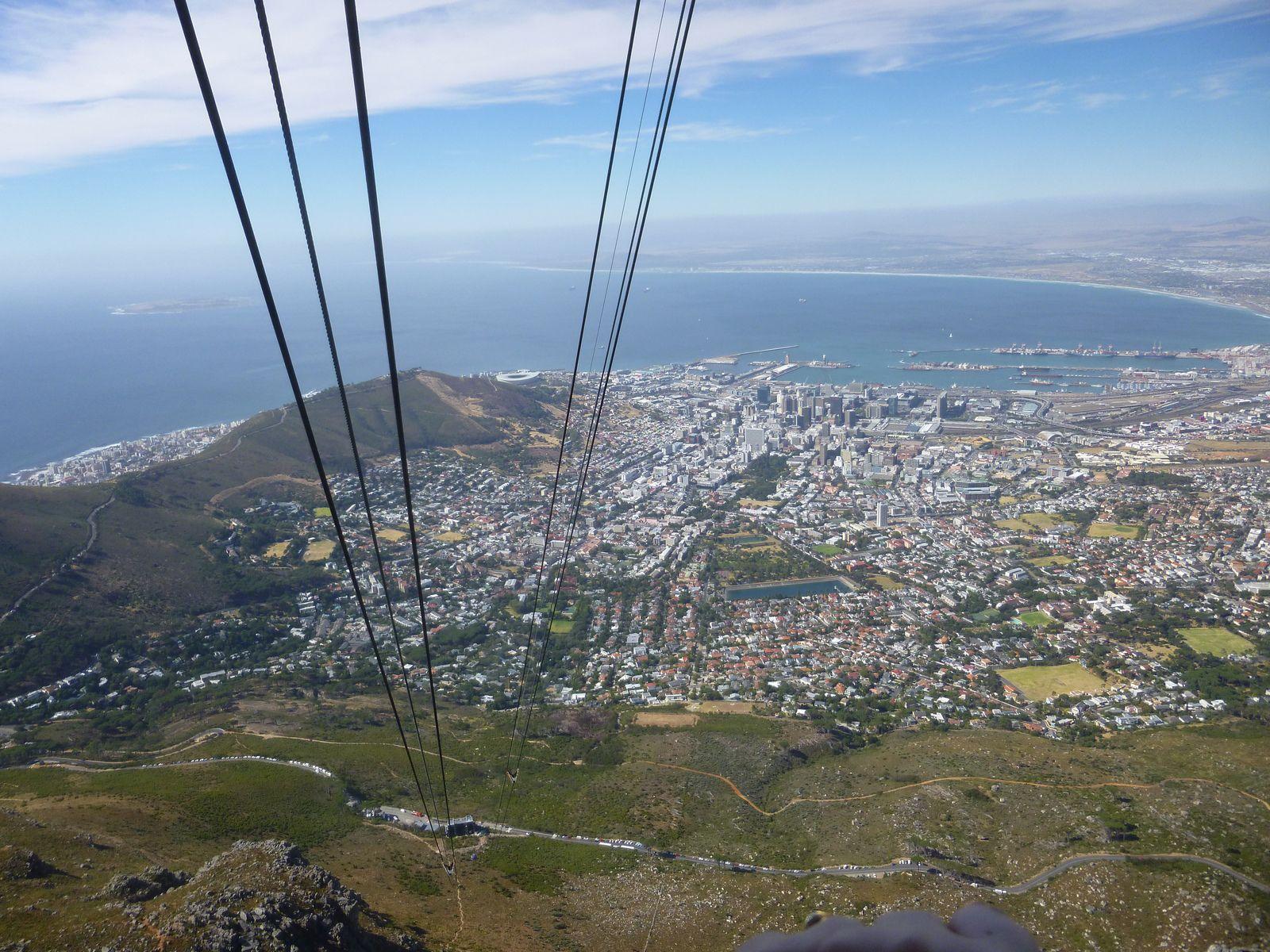 Vues du Cap (Afrique du sud, janvier 2017)
