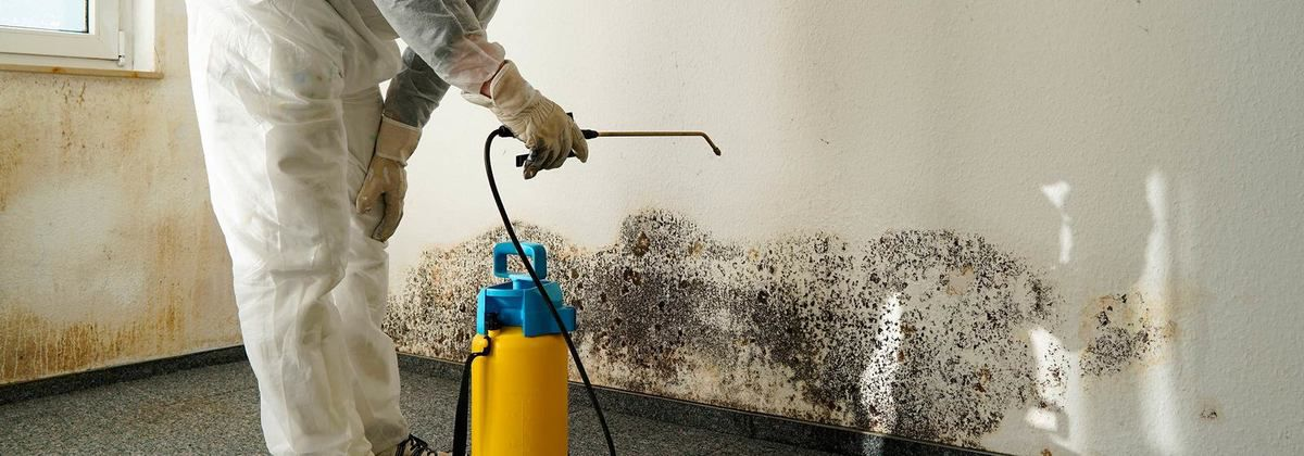 10 Ways To Cut Down On Condensation And Mould