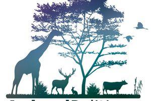 Collectif Animal Politique, le manifeste