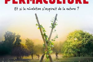L'Eveil de la permaculture (BANDE ANNONCE) Le 19 avril 2017 au cinéma