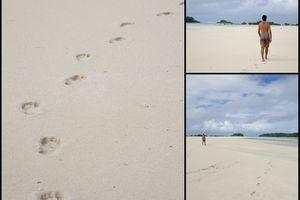 Aux Australes partie 3/3 : Raivavae