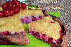 Tartelettes Amandines Rustiques aux Groseilles