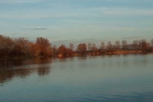 Séance du mercredi 14 décembre au lac d'Armbouts Cappel