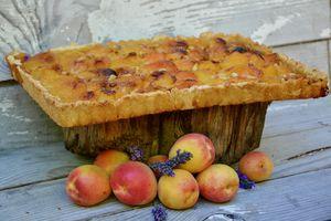Tarte aux abricots et pignons