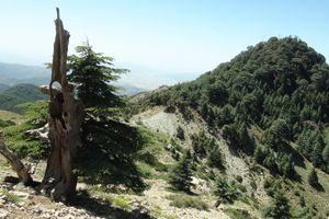 Le mythe kabyle