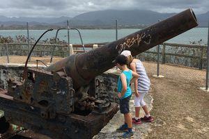 Canons de Ouémo ~ Nouvelle Calédonie