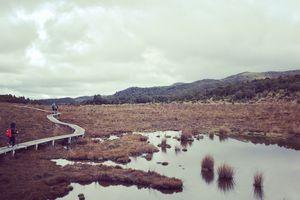 Randonnée à Waitonga Falls  ~ Tongariro National Park  ~ Nouvelle Zélande