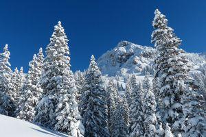 Que cuisiner pour toute la famille avant le ski ?
