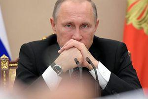Poutine appréciait beaucoup le professionnalisme de Tchourkine