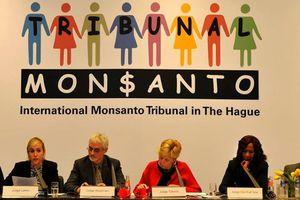Monsanto = Ecocidio