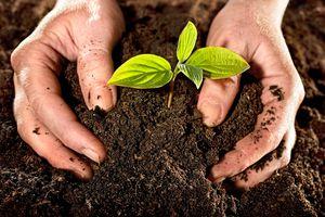 Acción Nacional para fomentar la agroecología