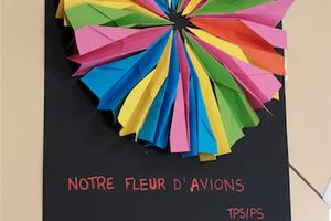 La fleur d'avions chez Audrey P