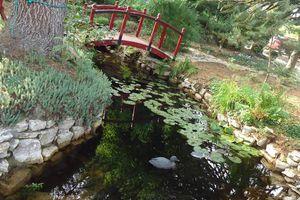 Mes sorties jardins : la Bourgogne ,le jardin exotique de Simandre....