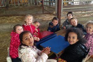 Classe découverte CP : déjeuner à la ferme.