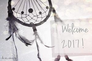 2017, une année bloguesque aussi? Mes projets virtuels pour l'année qui vient !