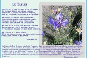 LE BLEUET - Fleur