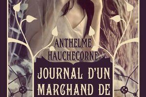 Critique Journal d'un marchand de rêve - Anthelme Hauchecorne