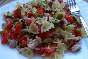 Salade de pâtes -LIGHT-