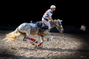 CALENDRIER OUEST LYON HORSE BALL